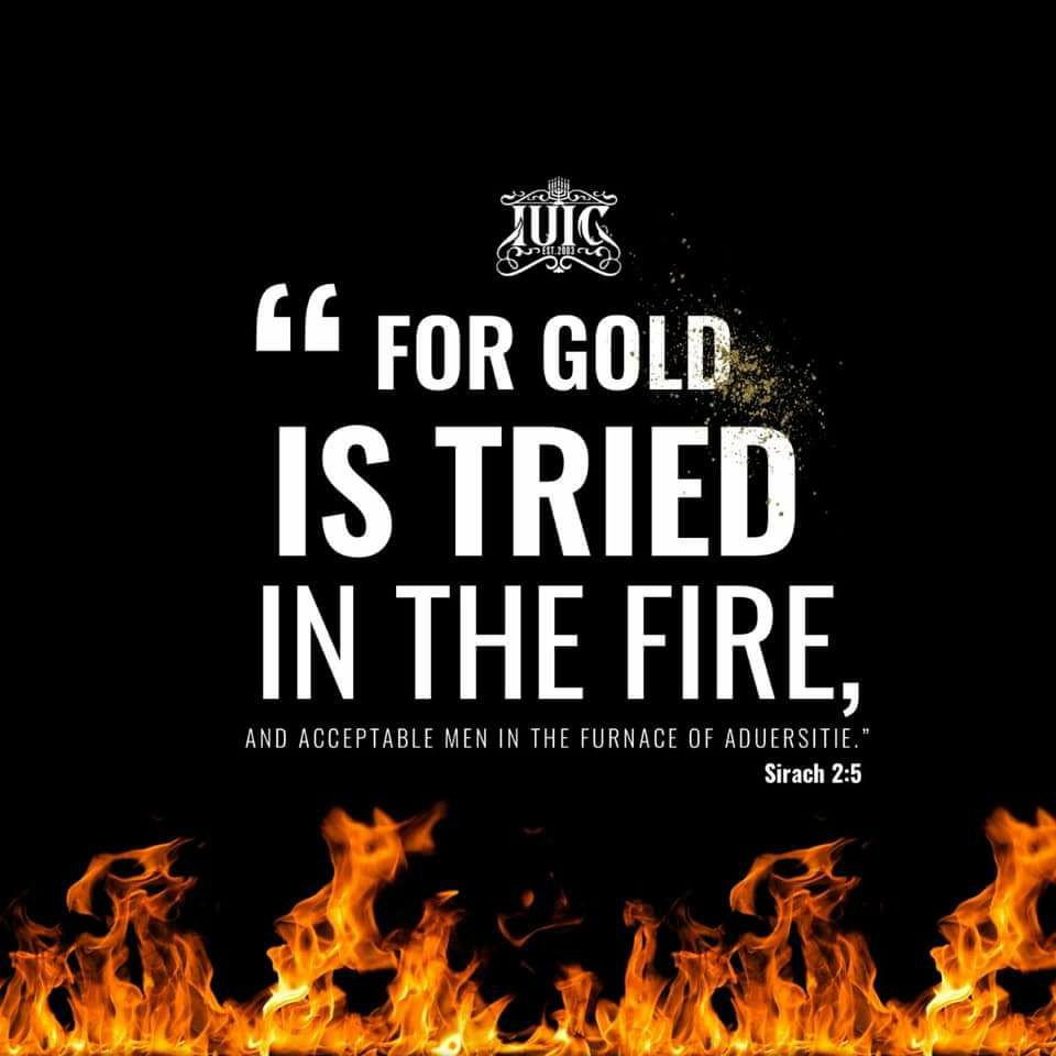 #Ecclesiasticus2:5 For gold is tried in the fire, and acceptable men in the furnace of adversity. #BibleVisuals #BibleImagery #DailyBread #IUIC #Bible #Scripture #southeastsd #loganheightscdc #loganheights #chicanopark #barriologan #chulavista #nickcannon #reggiebush #faizonlove https://t.co/cJVAsYI4Zx