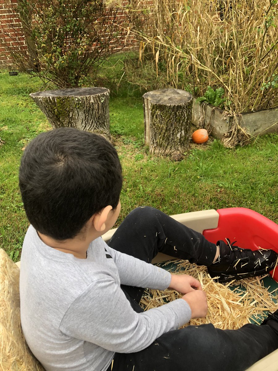 When you can't go on a field trip to the pumpkin patch, you bring the hayride to you!! Ss loved going on a hayride thru the @bfes_ltps pumpkin patch, picking pumpkins, and painting them 🚜🎃 #fallfun #bfrocks  @JayBilly2 @jmahler1972 @KFalangaGould @jeanne_fitton @eatpraylove219 https://t.co/U0Mt17KWRo