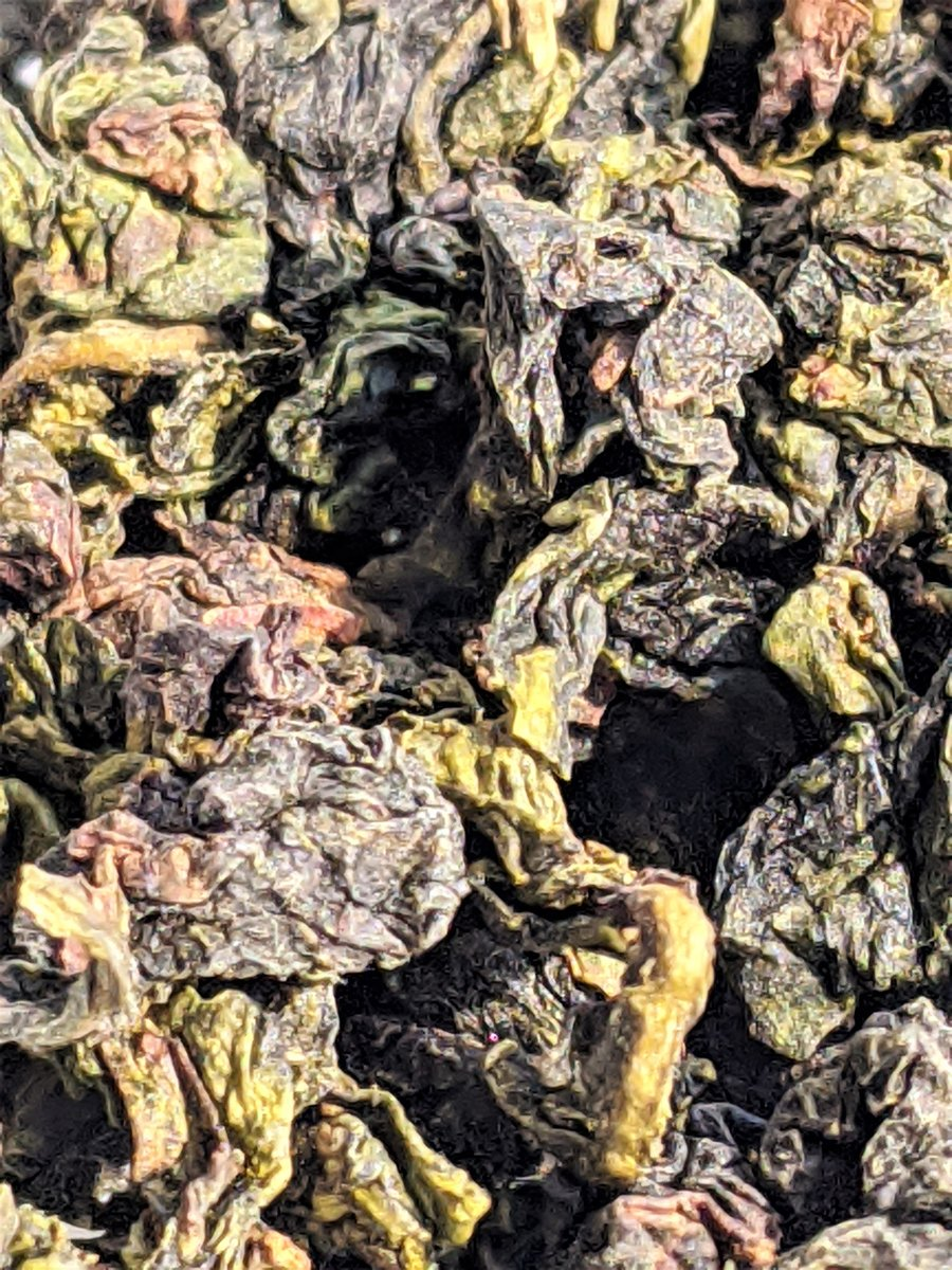 "Excited to share the latest addition to my #etsy shop: Mao Xie ""Hairy Crab"" Oolong https://t.co/5baG2nxzSs #green #bronze #looseleaftea #anxioolongtea #chineseoolongtea #affordableluxury #ecofriendlypackage #sweettea #hairycraboolong https://t.co/AAwvgMINoI"