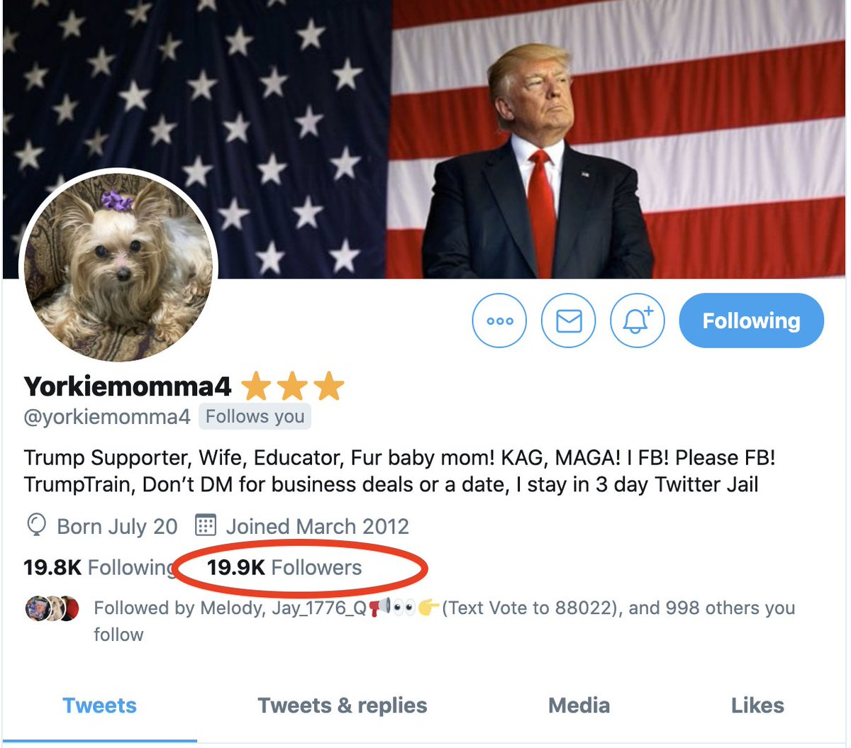 🔥⚔️🇺🇸🔥⚔️🇺🇸🔥⚔️🇺🇸🔥⚔️🇺🇸🔥⚔️🇺🇸🔥 ATTENTION Warriors: This amazing wonderful friend and patriot is coming up on 20K. If you arent following her you are truly missing out. Give her a follow @yorkiemomma4