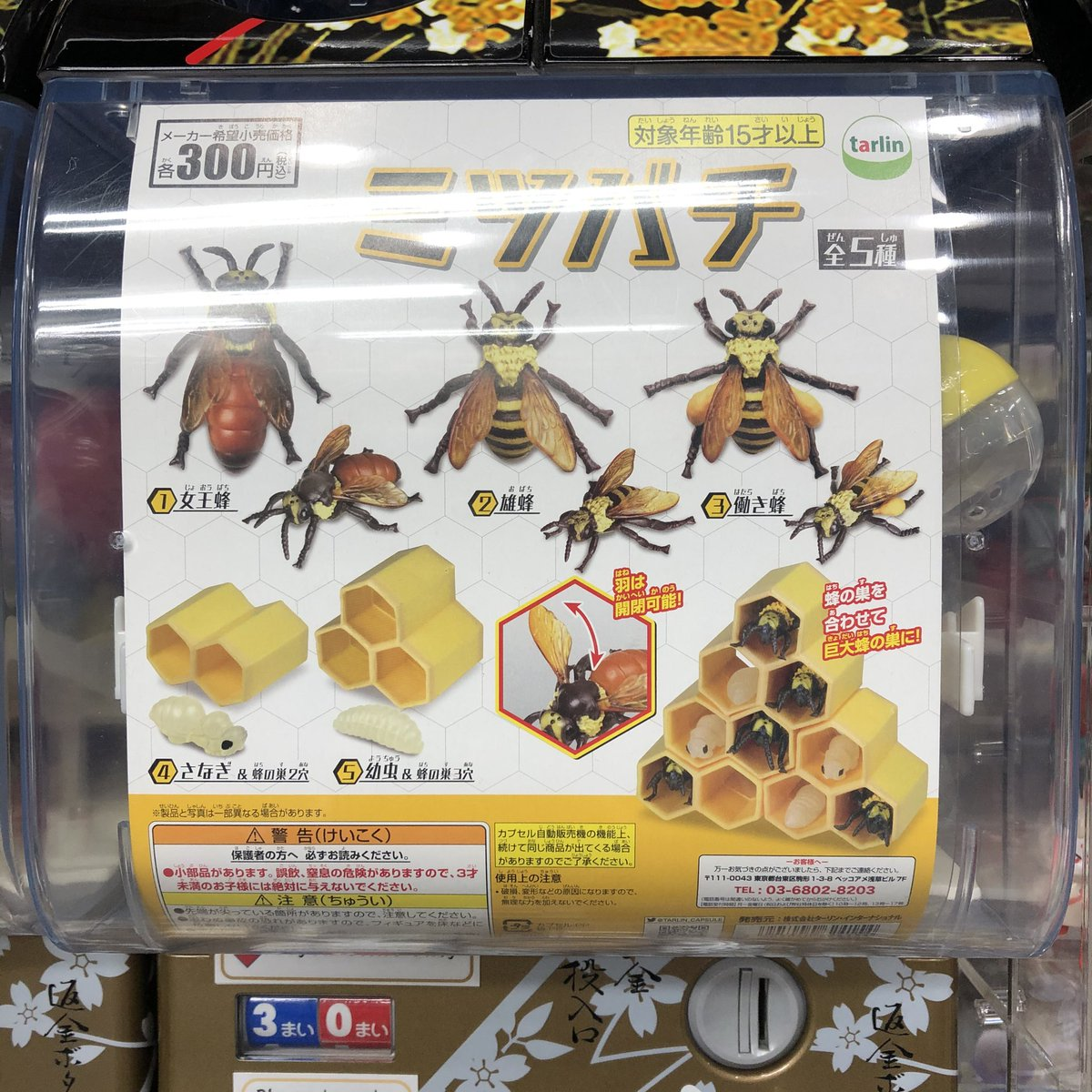 ガチャガチャ 蜂