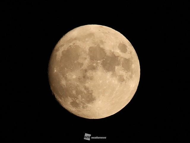 今夜の月も楽しみ🌕 #お月見