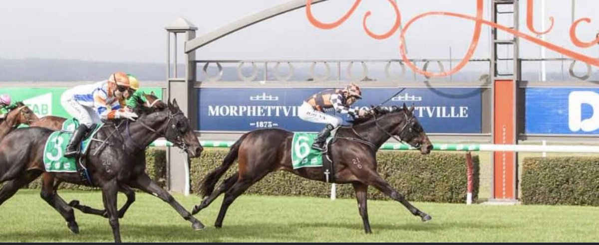 A huge thrill for us to have She Shao Fly heading to the Group 1 Empire Rose Stakes at Flemington on Derby Day. Fingers crossed for Saturday 🤞🤞🤞
