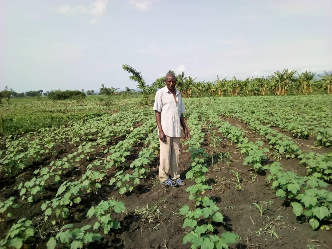 A #happy lead farmer inspects his cotton fields in western Uganda. Farmers are now planting cotton in neat rows with enough spacing between each seed, which is driving an increase in yields and income for farming communities. #westernugandacottoncompany #trainthetrainer