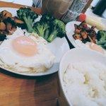 PapaBear_Japanのサムネイル画像