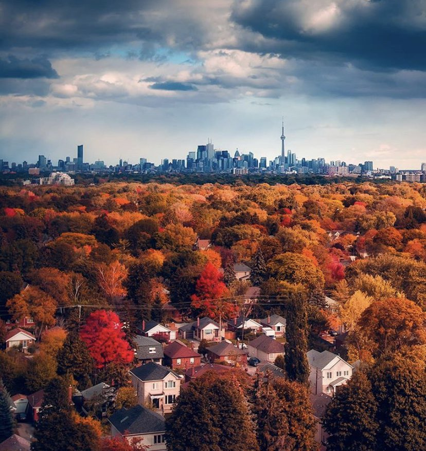 It's Thursday, October 29, 2020 🍂. Mainly ☁️ Cloudy today, with a chance of showers ☔️ and a High of 10°C. Have a great Autumn day #Toronto! 💙  📸 c/o IG: argenel 🙏🏼 https://t.co/zcS1Wu6Vnd