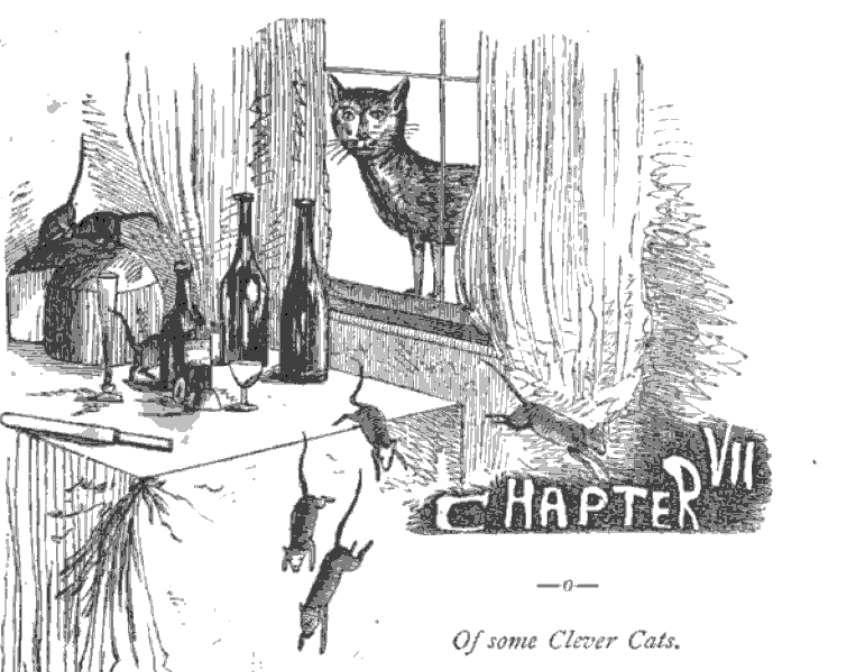 Happy #NationalCatDay! Celebrate with this meow-velous free read: The Book of Cats: A Chit-chat Chronicle of Feline Facts and Fancies, Legendary, Lyrical, Medical, Mirthful and Miscellaneous https://t.co/Bc1VFNOBDB https://t.co/srmvA7UWxo