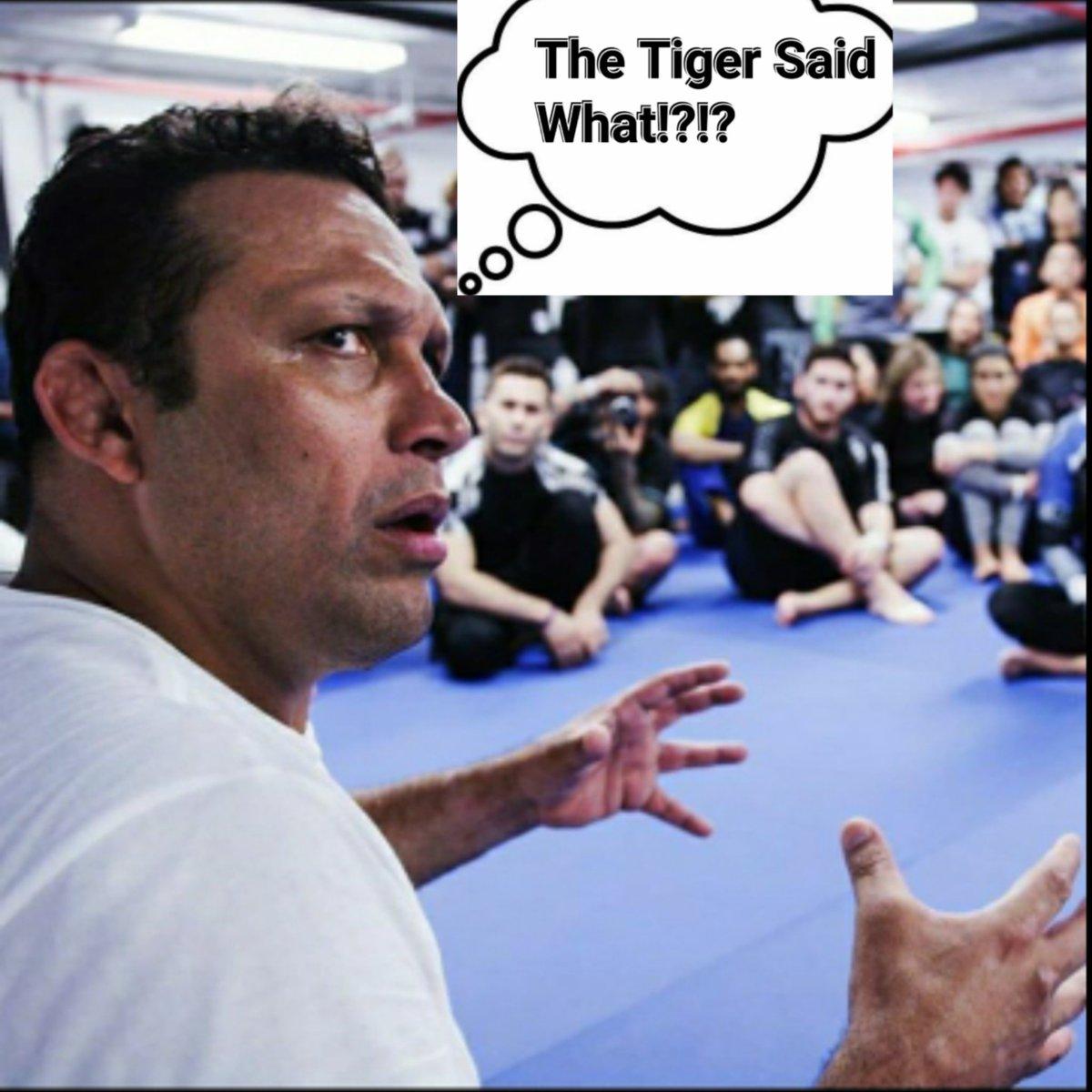 Maestro Renzo Gracie is like The Tiger said what!?!? #TeamRenzoGracie @RenzoGracieBJJ #AnthonyTheTigerCruz @Twitter https://t.co/1SPcryUfSI