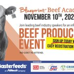 Image for the Tweet beginning: Hey beef producers! Check out