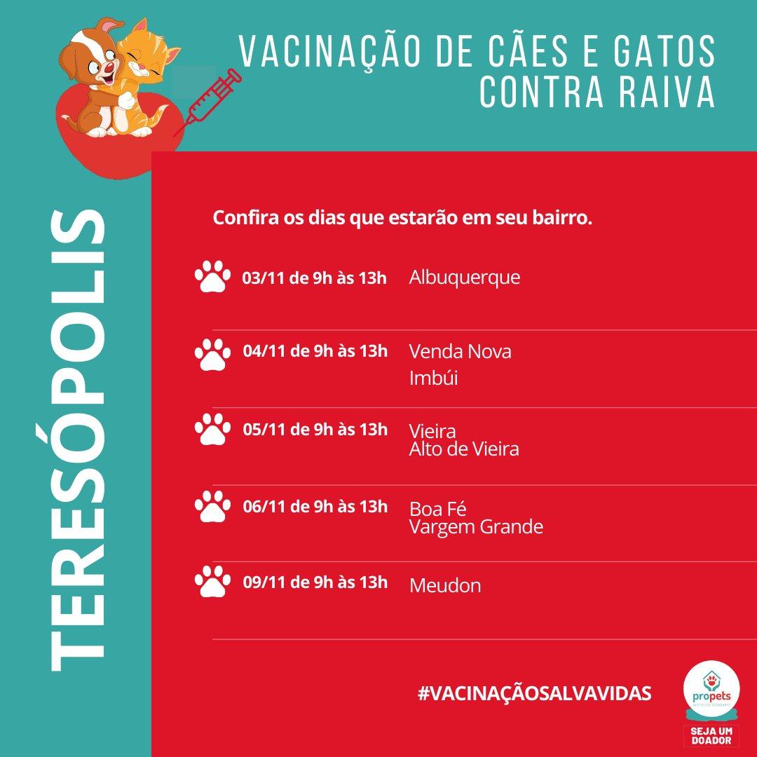 Teresópolis está com campanha de vacinação que irá passar o mês todo de novembro nos bairros.   A vacina em cães e gatos é contra a raiva animal e é muito importante para os bichinhos.   Não deixe de vaciná-los!  #adoção #ong #animais #gato #cachorro #propets https://t.co/OQ8gSykNAe