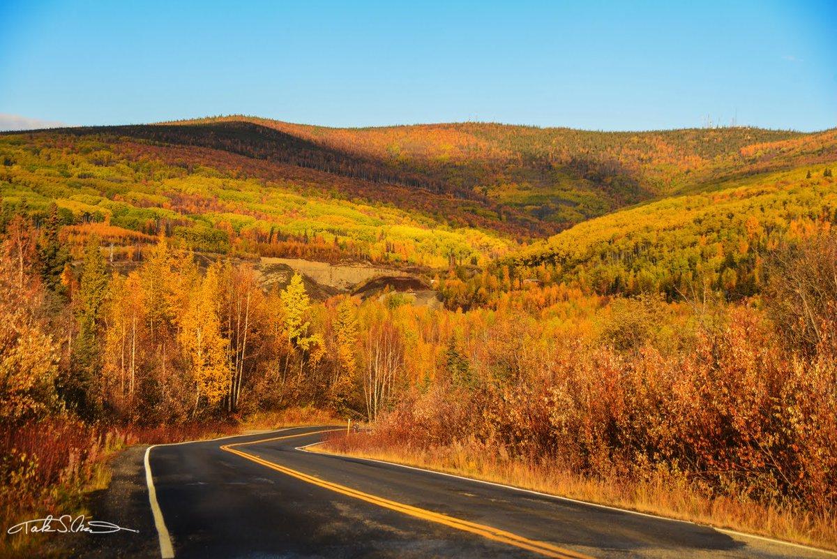 #コロナと火事で終わりそうな2020年なので大好きなアメリカの写真をアップ 毎年行ってるAlaskaのお昼をどうぞ〜!1月は太陽が出てるのは4時間ぐらい。Love Alaska! 1:10月初めは紅葉が超綺麗!2:1月は、大体-30度前後 3:Fairbanksの隣のNorth Poleにはサンタさんがいる!4:バナナで釘は打てます! https://t.co/XDleYyARp9