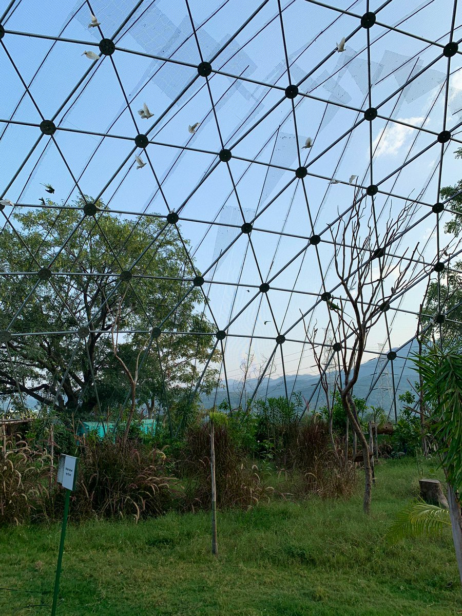 The Fly High Indian Aviary would be a treat for those interested in birdwatching. Come to Kevadia and visit this aviary, which is a part of the Jungle Safari Complex. It will be a great learning experience. https://t.co/RiZjDTcfOx