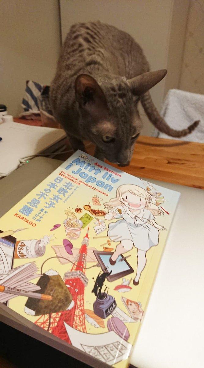 スウェーデン語版の北欧女子&台湾版の『北欧女子オーサ日本を学ぶ』が出版されました〜!!嬉しいですo(^^)o(送ってもらった写真なので、私のにゃんちゃんじゃない(ToT))詳しくはブログで書きます!