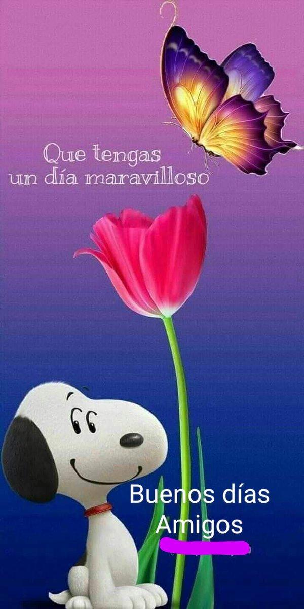 Para ti Que tengas un hermoso viernes #BuenosDiasATodos https://t.co/me4JpuL62T