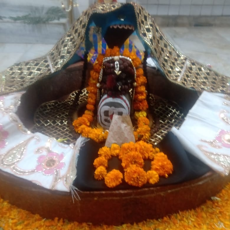 हर हर महादेव  आज का श्रृंगार  #HarHarMahadev #om .#namashivaya  #har #har  #mahadev_har  #ambikadevi_ji  #derababamangalnath #ambikadevimandir #kharar  #Mohali #punjab  @MYogiRamnath #myogiramnath https://t.co/uZ2jNcn0Af