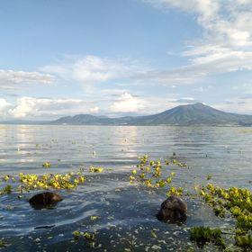 🌐 #FotoPostal #BuenosDías | Ya es viernes e iniciamos con una imagen que muestra la belleza del #Lago de Chapala, con una vista desde El Chante, en #Jocotepec.     Foto: Dental Ribera del Lago 📸    #SemanarioLaguna #LaNoticiaComoEs 📰 https://t.co/yPLdAIGYg0