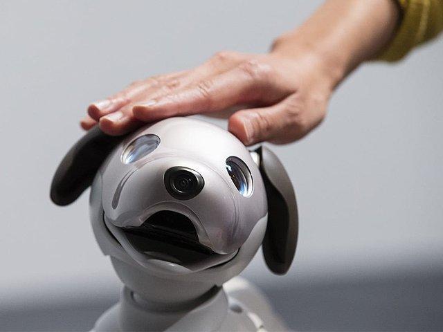 Can take the task of training to dog .. Read more on https://t.co/jA390Iv39K   #artificialintelligence #art #tech #toys #robotica #electronics #scifi #stem #innovation #mecha #automation https://t.co/53KjrWB0QG
