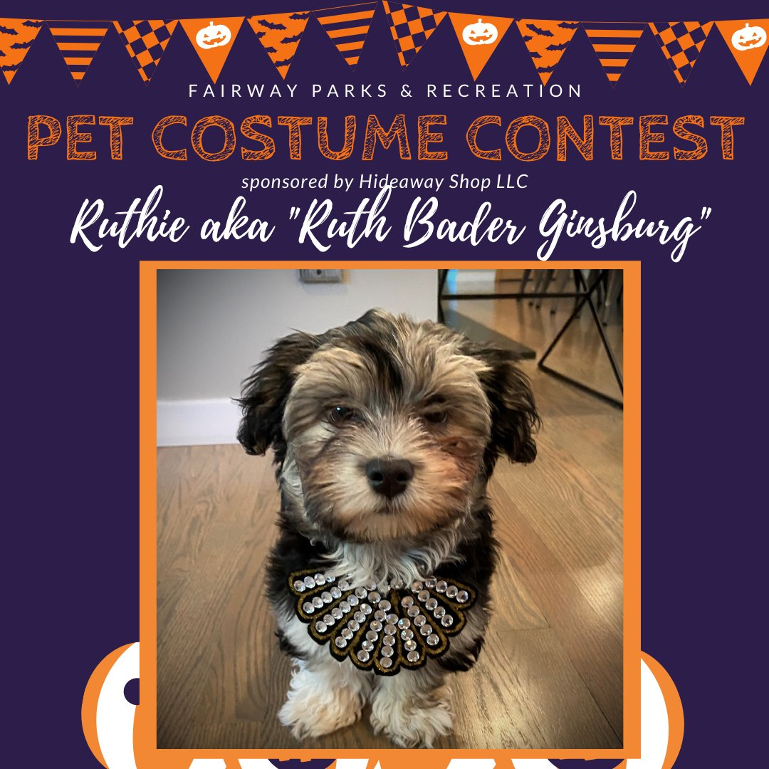 #FairwayCostumeContest - Ruthie, a 14 week old Havanese, has joined the costume contest as her alter ego