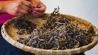☘️Mpya☘️ Grand Challenges: Integrating Tradition and Technology for Fermented Foods for Maternal Nutrition https://t.co/NjKReMcM3D #traditional #fermentedfoods #nutrition #maternal #NipeDili #mwanampotevu https://t.co/DLWMpjL21V https://t.co/xUhTz4sIg2