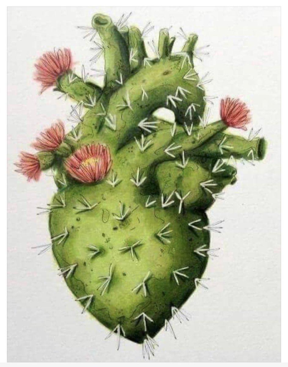 """""""Hay que ser como el cactus, adaptarse a cualquier tiempo, lugar y circunstancia... ser fuerte y aun así, nuca olvidarse de florecer."""" #EsTiempoDeMujeres https://t.co/WK2tvjltAn"""
