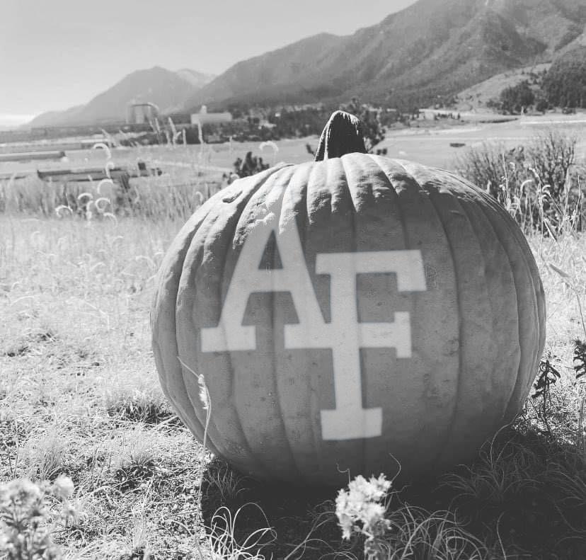 RT @AF_Academy: Happy Halloween Weekend! 🎃👻 https://t.co/pAqi5kGbgw