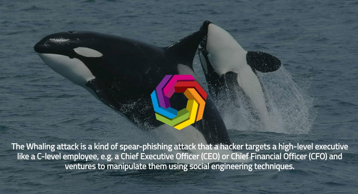 Whaling attacks have seen a sharp rise and are expected to go up. https://t.co/R6j59bYkFl #whaling #hacking #infosec #ransomware #malware #phish #datasecurity #cybercrime #databreach #cryptocurrency #gdpr  #privacy #ai #security #dataprotection #technology #cybersecurity https://t.co/zyBBgqUMUA