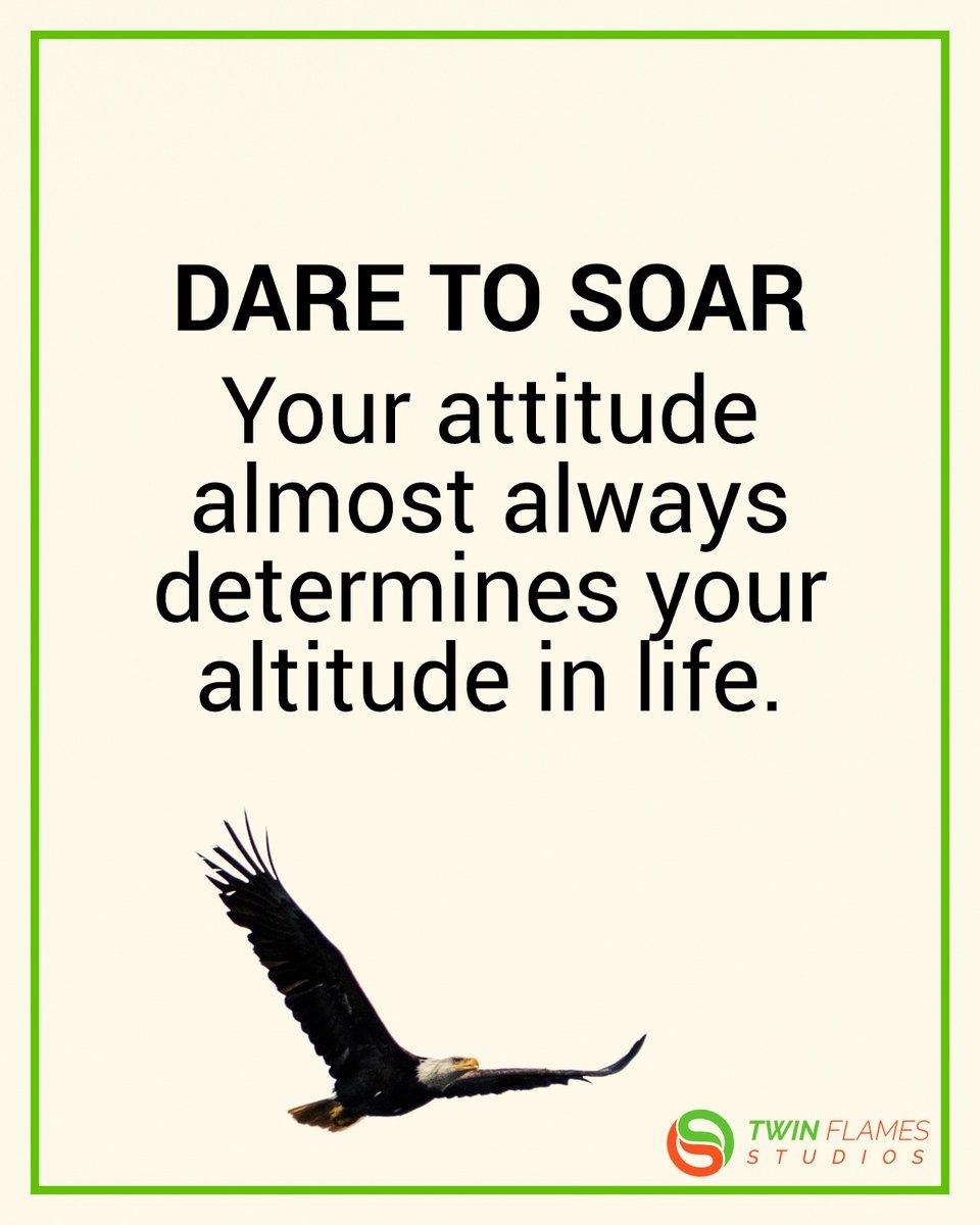 Dare to soar #inspiration #motivation https://t.co/SLctRufs8v