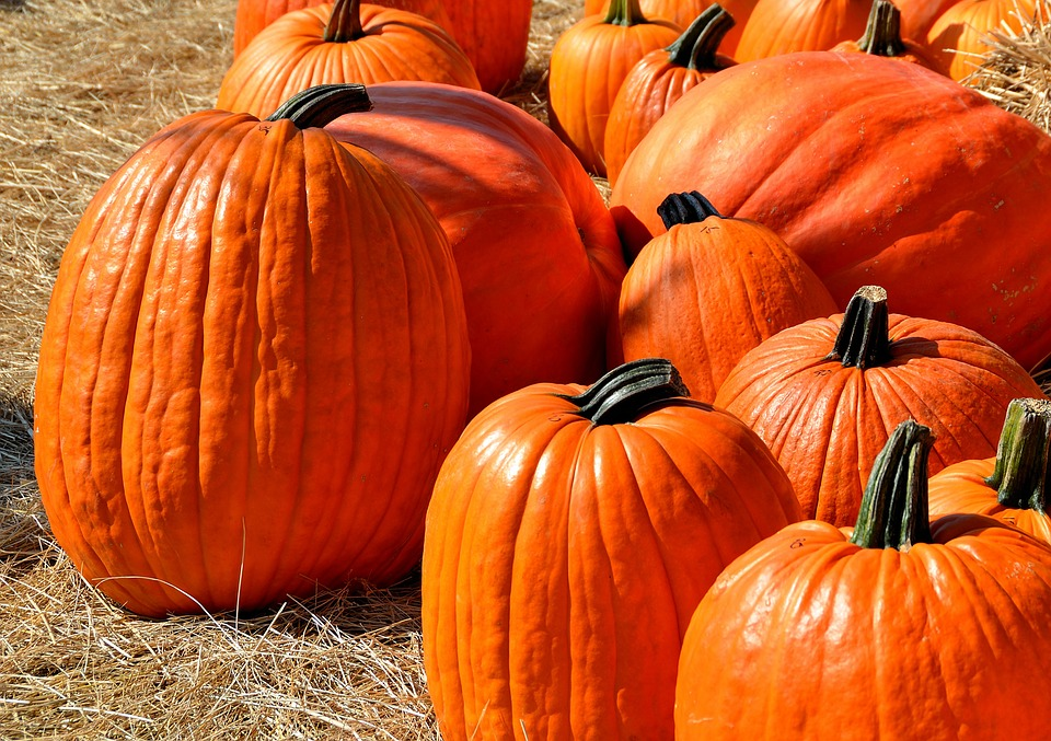 How to Mix Kids, Paint, Pumpkins & #Relaxation https://t.co/57ueh9dK81 #fall https://t.co/IohhYr8Tng