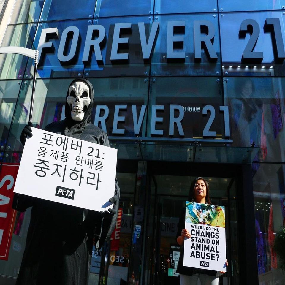 """可怕的""""死神""""降临韩国首尔 @forever21 门前,与动物保护者一起提醒民众:羊毛正在伤害绵羊!💀  你的羊毛衫、大衣、围巾及其他羊毛制品,都可能包含着对绵羊的踢打、暴虐💔。  #WoolFreeHalloween  #万圣节 #Seoul #WoolIsCruel #Forever21 #Korea  #NeverForever21 https://t.co/0ua1AinzXL"""