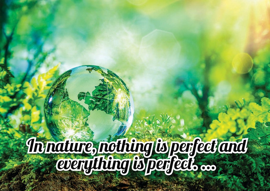 In nature, nothing is perfect and everything is perfect. ...  #nature #SpreadPositivity https://t.co/dlKjYLkbSm