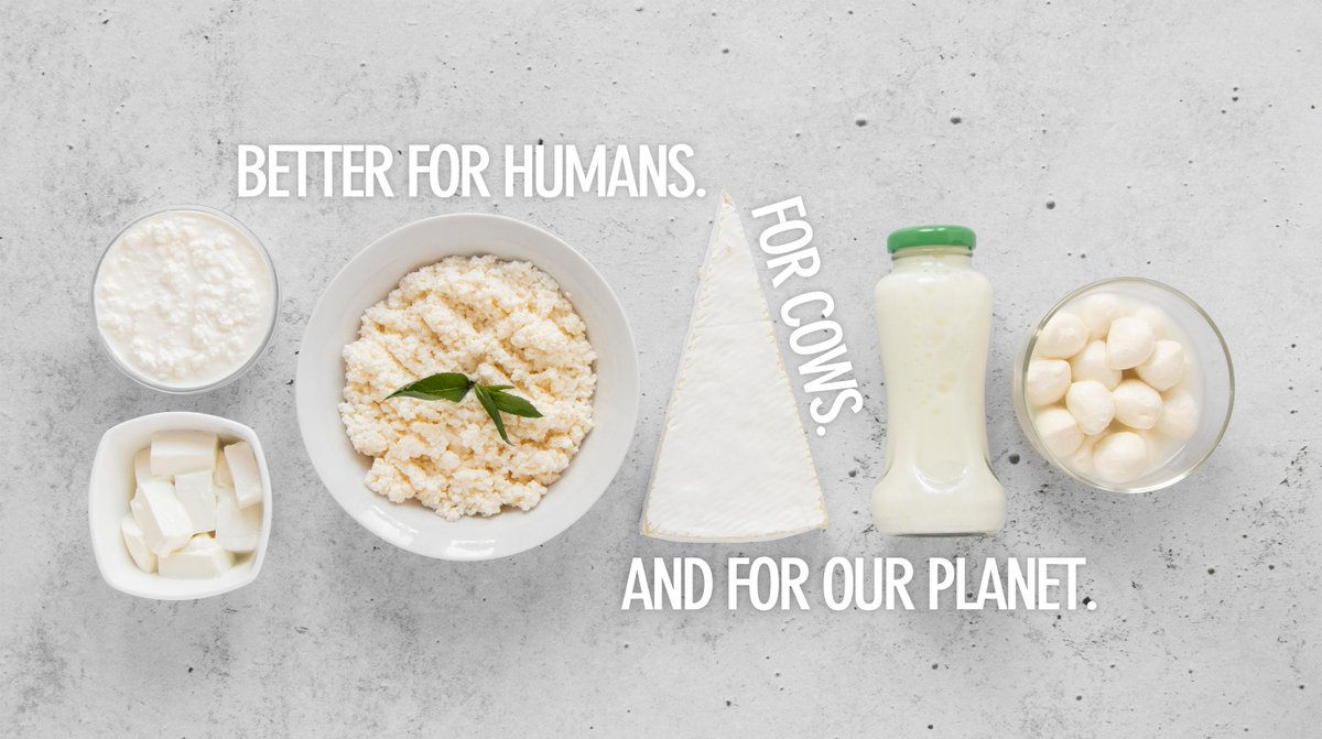 In such a critical time for our planet, each one of us should contribute his part in our struggle against the climate crisis. For us in Remilk, we aim to contribute our part by creating dairy products that are better for humans, for cows, and for our planet.