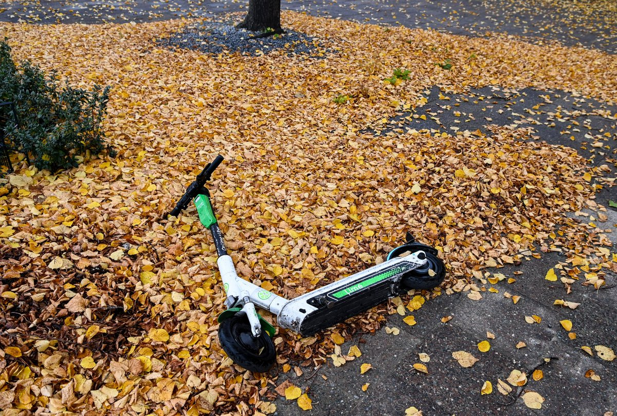 Lime's CEO on the future of scooters: 'COVID has turned from a headwind into a tailwind'
