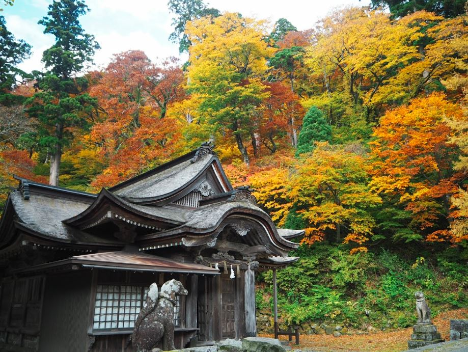 Mount #Daisen, in #Tottori prefecture, is one of top 3 mountains of #Japan. This is the view from Daisenji temple, with #foliage #colors of late #October. #紅葉 #日本 #japantravel #travelphotography #picoftheday #visitjapan #onigiro #naturephotography #autumn #fall  📸source: web https://t.co/Uwg9C9Jg16