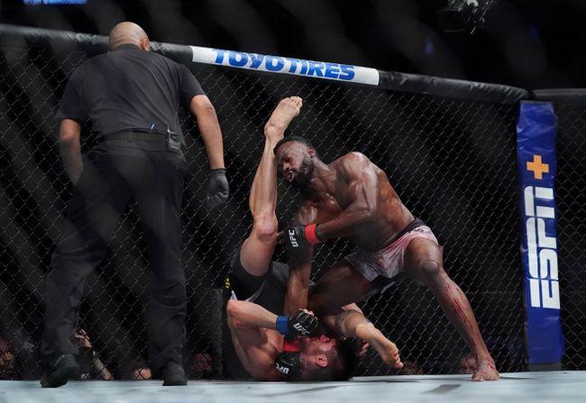 UFC Vegas 12: Anderson Silva vs. Uriah Hall Picks, Odds, and Predictions https://t.co/95VjHmLome #ufc #ufc249 #ufcfl #ufcjax #ufcfightnight #ufc176 #ufcvegas #ufc250 #ufcapex #gamblingtwitter #bettingtwitter #bettingtips #freepicks #espn #ufcvegas12 #bettingpeople #betting101 https://t.co/ktDFgcNbT6