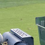 Image for the Tweet beginning: Last day of full @dryject