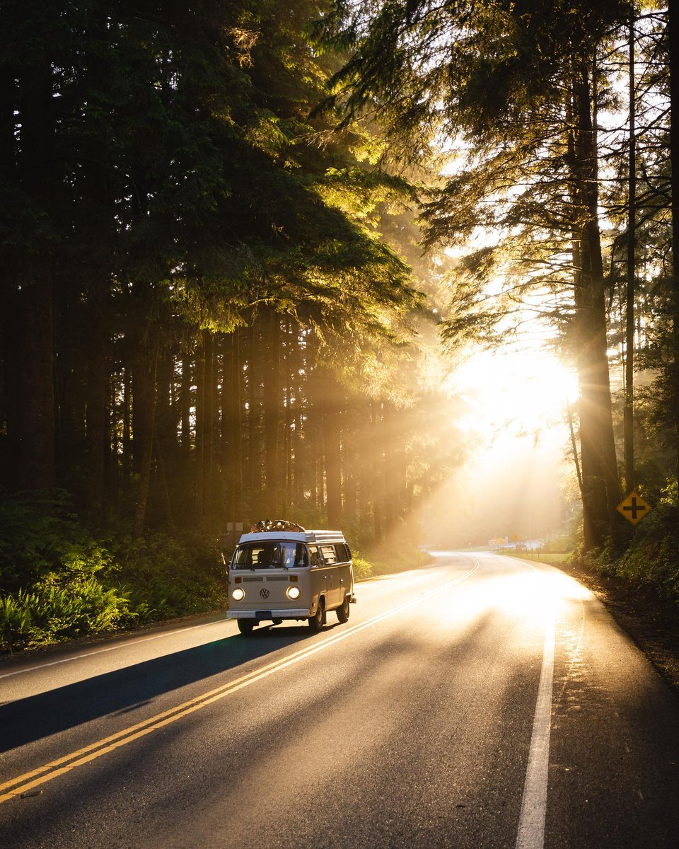 """test Twitter Media - """"Buslife on the Avenue of the Giants"""" by Menashootz with @thevanlifeapp // #avenueofthegiants #humboldt #redwoods #buslife #type2 #vw #Volkswagen https://t.co/Q09DOIeF5G"""