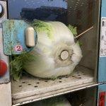 コインロッカー式の野菜自販機のおつり返却の方法…白菜に爪楊枝で50円玉が突き刺してあった!