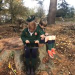 Image for the Tweet beginning: In Forest School Year 3