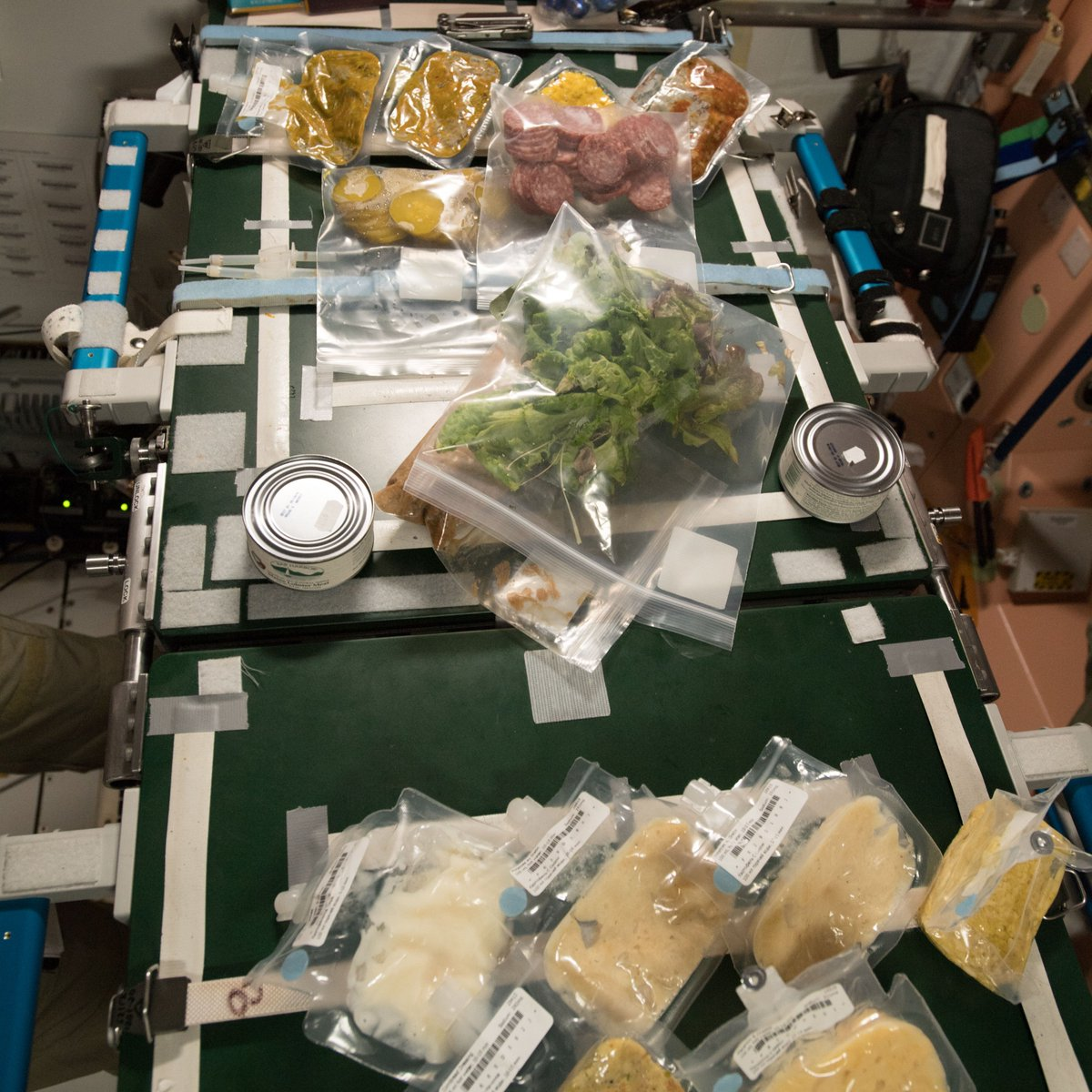 This week is #Thanksgiving! Time to bring awareness to health and nutrition for astronauts living on the @Space_Station. NASA's Human Research Program studies how food and nutrition will be important for future long-duration missions. https://t.co/WH1JlB85Dm https://t.co/AnV5d0mtwe
