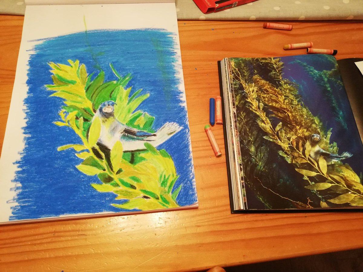My first attempt with pastels...I think I should have started with something easier! @ourplanet @wwf_uk