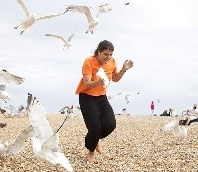 The Waterfowl University Rankings (semi 1/2), featuring @dundeeuni Seagulls, @LancasterUni Ducks, Cath the @OpenUniversity Duck, @uniofreading Mandarin Ducks  Vote in the poll below ⤵️ https://t.co/8UM0DH9hBK