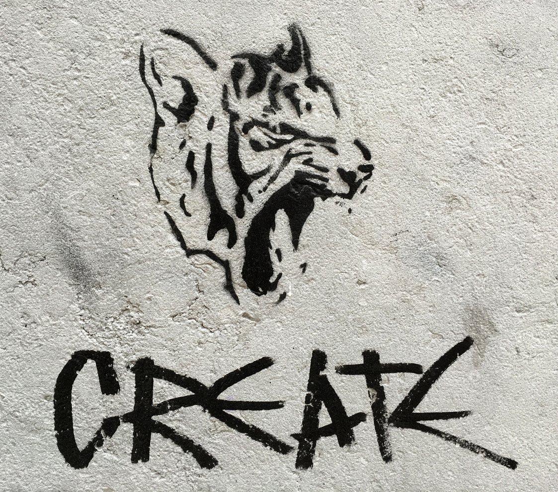 animal art crimes (@animalartcrimes) on Twitter photo 2020-11-05 03:23:48