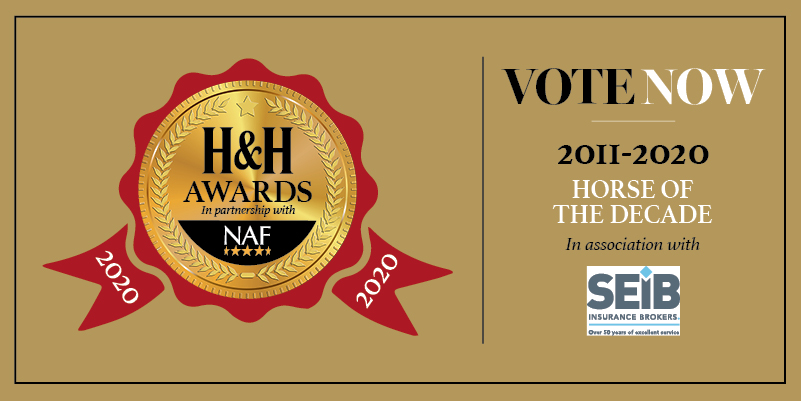 Last chance to vote for @SEIB_Insurance Horse of the Decade. Voting closes at 23:59 5 November    #SEIBHere2Help #HHAwards20NAF