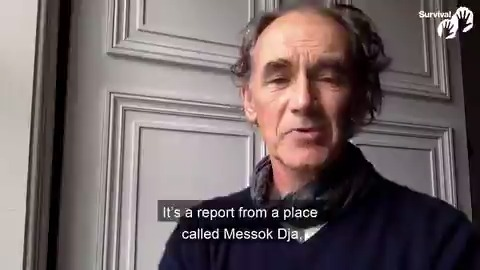 Oscar-winner Mark Rylance reads from a UNDP report detailing abuses by @WWF-funded rangers against Baka people in the Congo. Conservation NGOs have known about this for years but remain silent. #SilenceIsComplicity #BigGreenLie svlint.org/biggreenlie svlint.org/EPconference