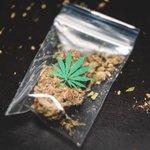 Image for the Tweet beginning: #cannabis #weed #marijuana Thousands in