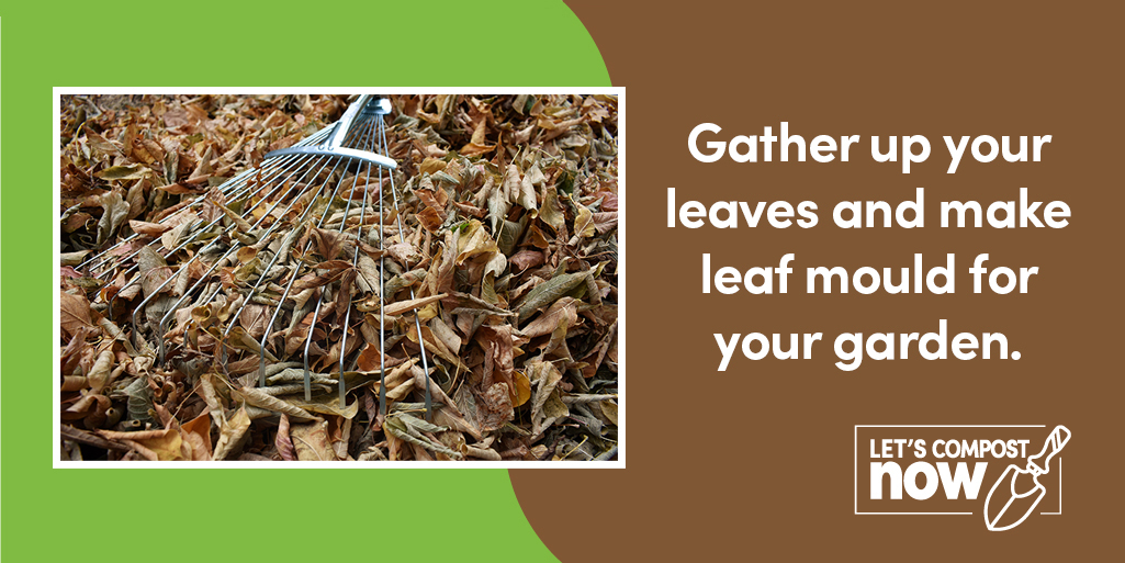 Leaves are falling all around  Gather up your leaves and make leaf mould for your garden   Find out how visit  #LetsCompostNow #WednesdayMotivation @GMGreenCity