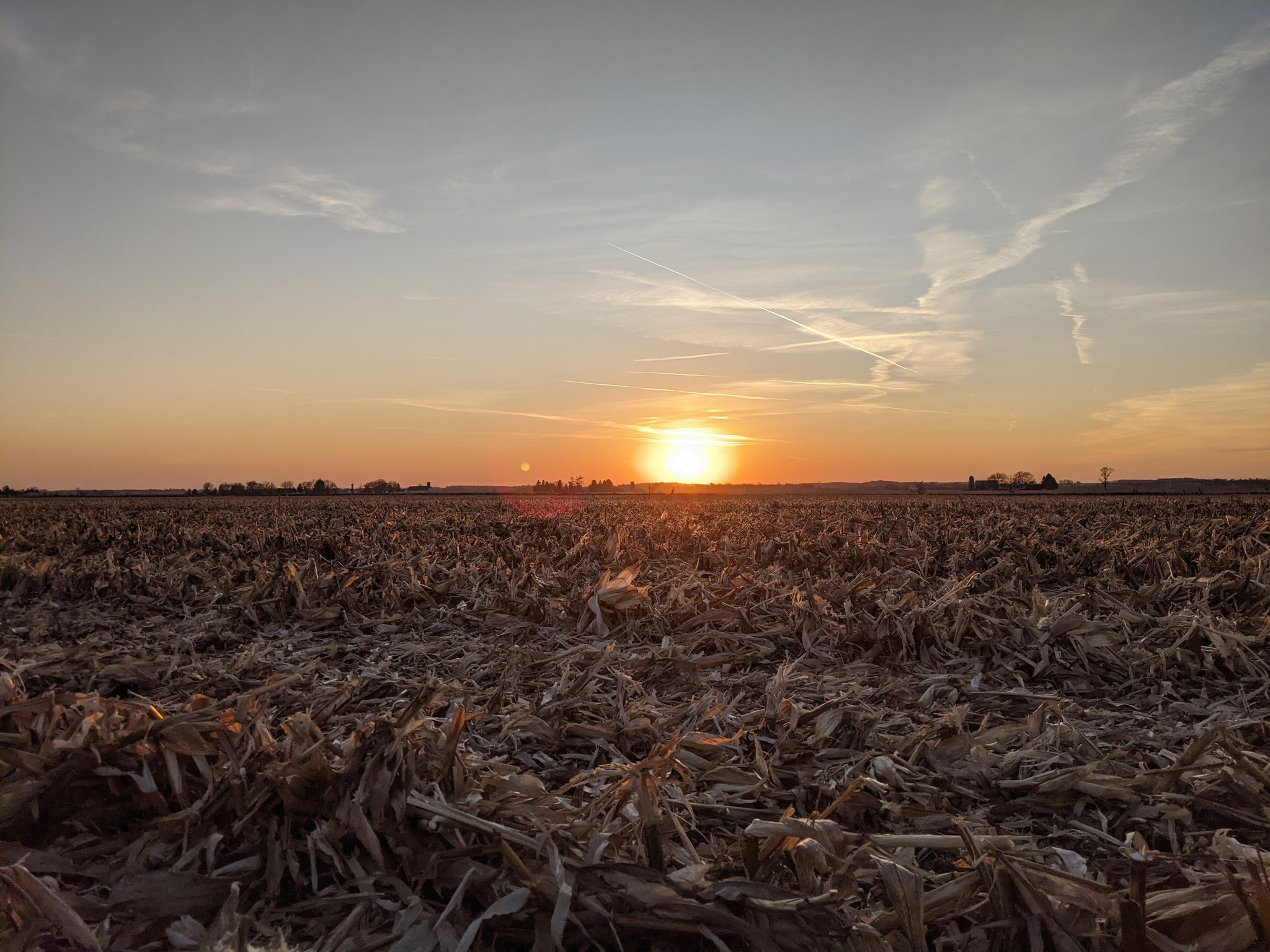 Sunset over a field with sparse trees far in the distance. The sky is blue and fades to orange near the horizon. The foreground has visible corn stubble.