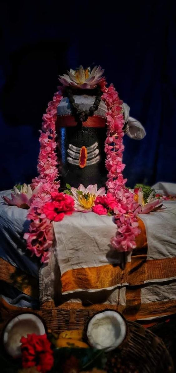 Photo Credit: gandhiaino from Pinterest ( https://t.co/GWvp2Emgfi ) May Lord Shiva bless all of us 🤗. #namastegod #shiva #lordshiva #kedarnath #kashi #hindu #haraharamahadev #mahadev_har #jyotirlinga #linga #somanath #somnath #mallikarjuna #mahakaleshwar #omkareshwar #vaidyanath https://t.co/knaVknlsgo