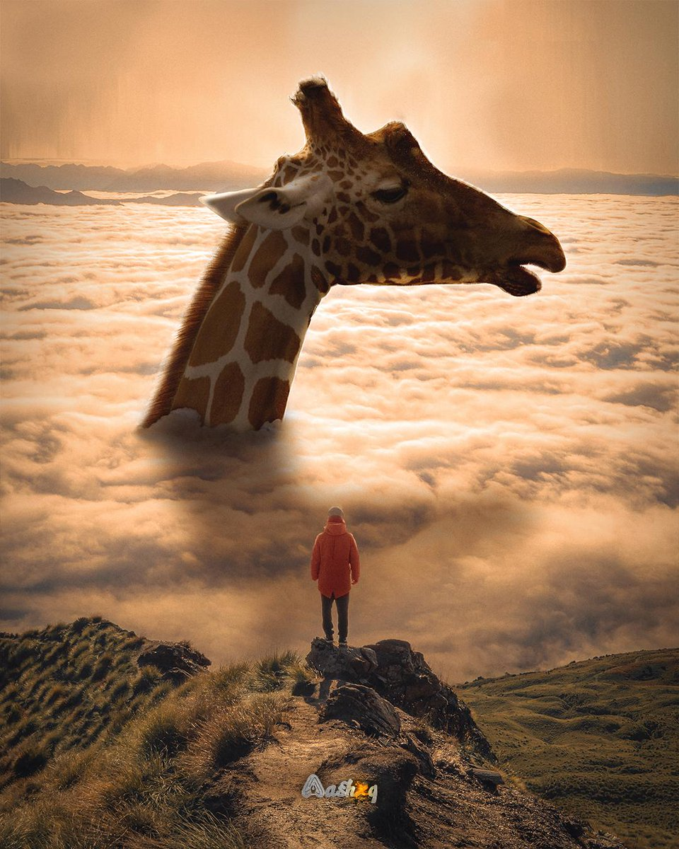 Giraffe, Aashxq, Digital, 2020