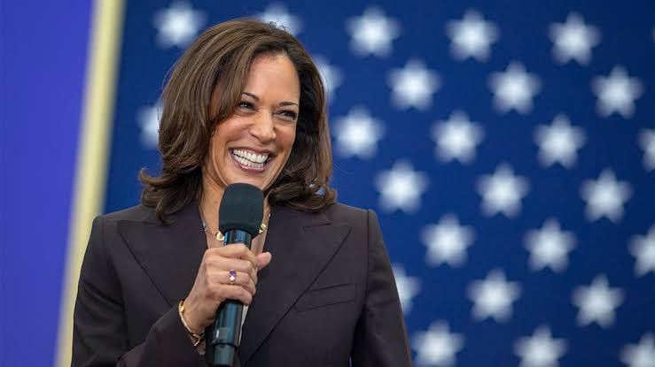 Woman of Colour  Human with a Spirit of Steel Daughter of Immigrants  Possessor of an infectious toothy grin Fights like a beast Dances like a dream  The first woman Vice President in the history of The United States!  #KamalaHarris  @KamalaHarris 💪✊ #WarriorsNotPrincesses